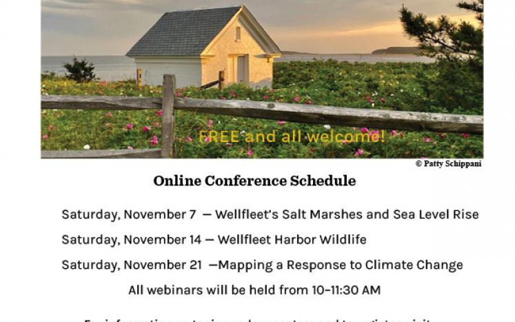 State of the Harbor Conference goes virtual in 2020